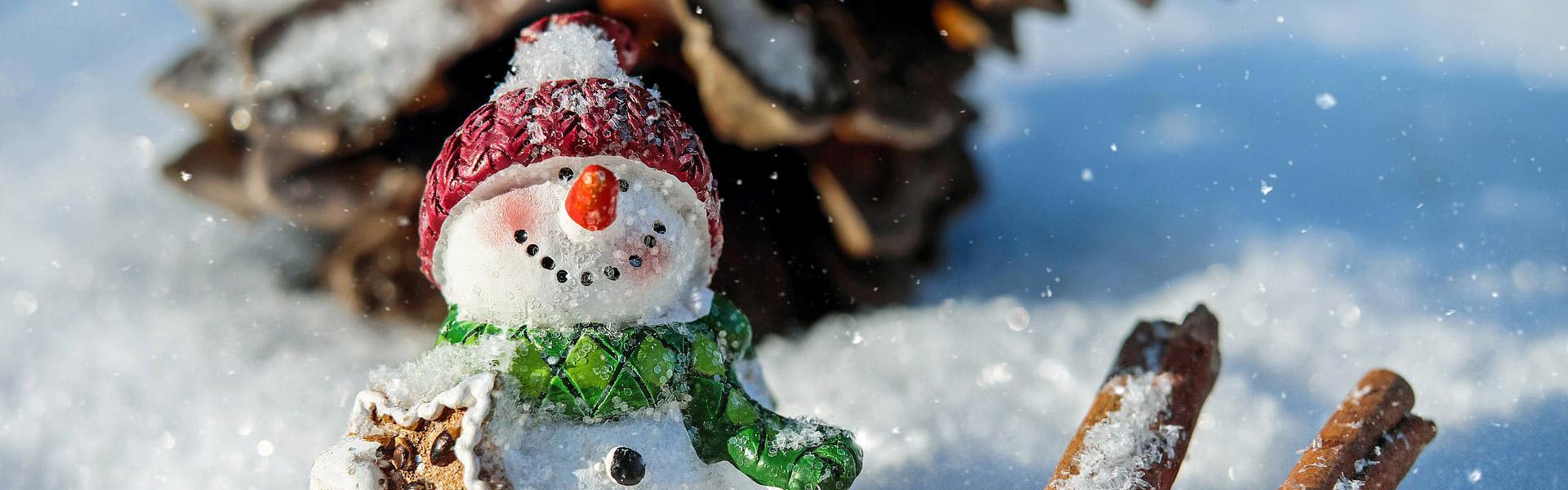 sneeuwman-vochtadvies